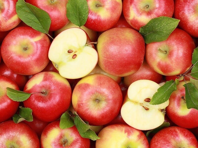 Ăn táo giúp phòng ngừa ung thư
