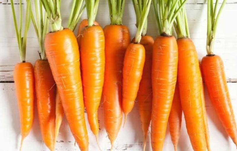 Cà rốt ngăn ngừa và chống ung thư